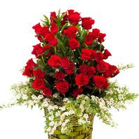 꽃바구니(꽃행복167호)